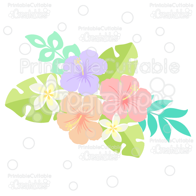 Tropical Plumeria Hibiscus Flowers Svg Cut Files