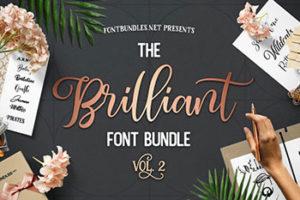 The Brilliant Font Bundle Commercial Use Fonts