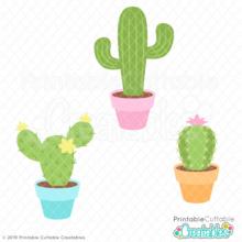 Potted Cactus Trio SVG File & Clipart